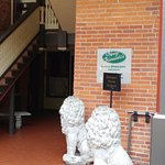 The lions at the entrance.