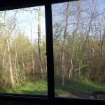 Lovely morning view from my RV bedroom window
