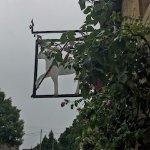 The Lamb Inn Foto