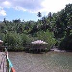 Ekowisata Mangrove Pintu Kota