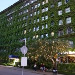 One Side of the Hotel is Vine Covered