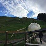 Photo de OGO Rotorua