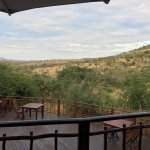 Thanda Safari Image