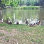 Foto de Parc de l'Orangerie