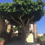 Minos Pension & Roof Garden Lounge Foto