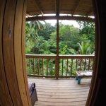 Roots Jungle Retreat afbeelding