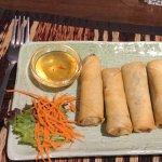 Delicious spring rolls