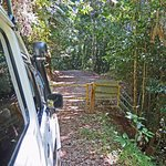 Wilderness Eco Safaris - Private Forest Road