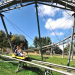 Wisp's Mountain Coaster is a must-try during your trip to Wisp Resort during any season.