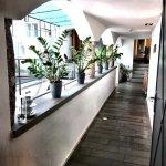 arthotel Blaue Gans Foto