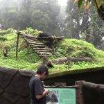Photo de Padmaja Naidu Himalayan Zoological Park