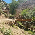 Bike Trail with bridge