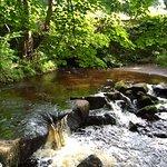 The river near Quarry House