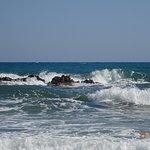 Photo de Cactus Beach Hotel & Bungalows
