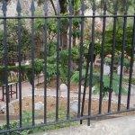 Photo of Trafalgar Cemetery