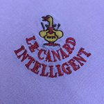 Photo de Canard Intelligent