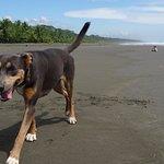 playa larga and mira