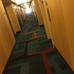 Fairfield Inn & Suites Memphis Germantown Foto