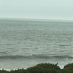 Photo de Cypress Inn on Miramar Beach