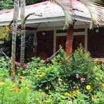 Photo de Hotel Villa Paraiso