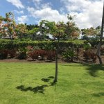 Kohala Suites by Hilton Grand Vacations Foto