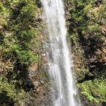 Kayak, then jungle hike to the secret falls!