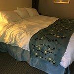 Foto de Radisson Hotel Corning