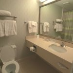 Photo of SpringHill Suites Houston Medical Center/NRG Park