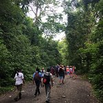 Walking with our naturalist guide in Manuel Antonio National Park.