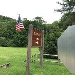 Foto de Roan Mountain State Park
