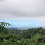 Photo of Daintree National Park