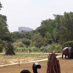 View of Sigiriya rock from entrance