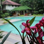 Greenwoods Resort Foto