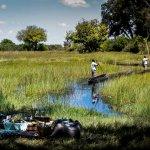 Photo de Wilderness Safaris Vumbura Plains Camp
