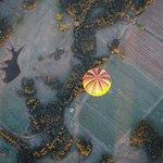 Foto de Balloon Aloft Hunter Valley Day Tours