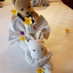 The lovely towel arrangement after room service. It was cute that they included Teddy!