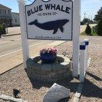 Blue Whale Inn