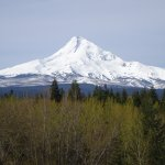 Mount Hood from a Distance