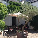 Courtyard garden and sample dishes