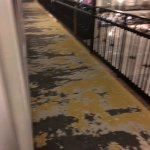 Old, dirty carpets