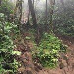 Foto de Cerro Chato (Chato Volcano)