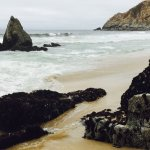 Foto de Gray Whale Cove State Beach