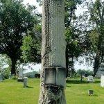 Victorian Tree memorial