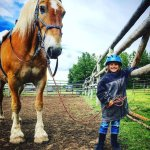Big horse, little girl, giant smile!