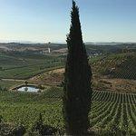 Photo de Agriturismo Isola Verde