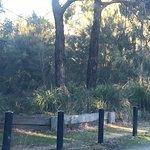 Royal Botanic Gardens Cranbourne