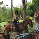 staff can arrange for a guided horse riding tour for $10-20.