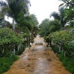 Walk way to the villas