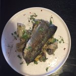 Oven baked rainbow trout with lemon, dill and butter