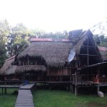 Photo of Jamu Lodge